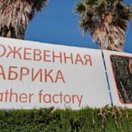 Mallorca se adapta al ruso